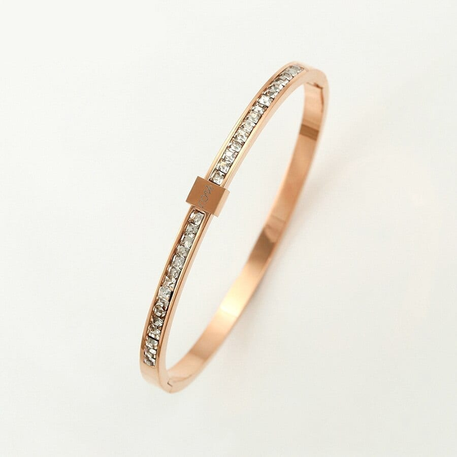 Fashion Bangles for Women Stainless Steel Jewelry Specially Design - Luxynor.com